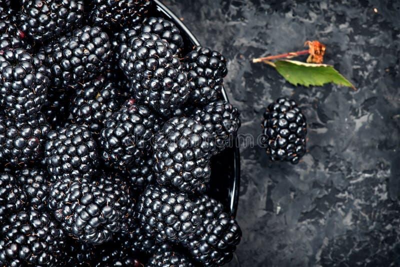 brombeere Frische reife organische Brombeeren in einer Schüsselnahaufnahme Ebenenlage auf Grau stockfoto