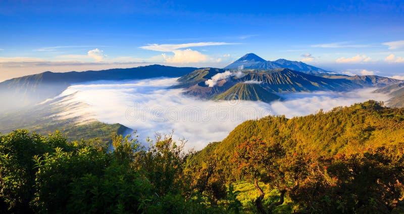 Bromo火山全景在日出,东爪哇省,印度尼西亚的 库存图片