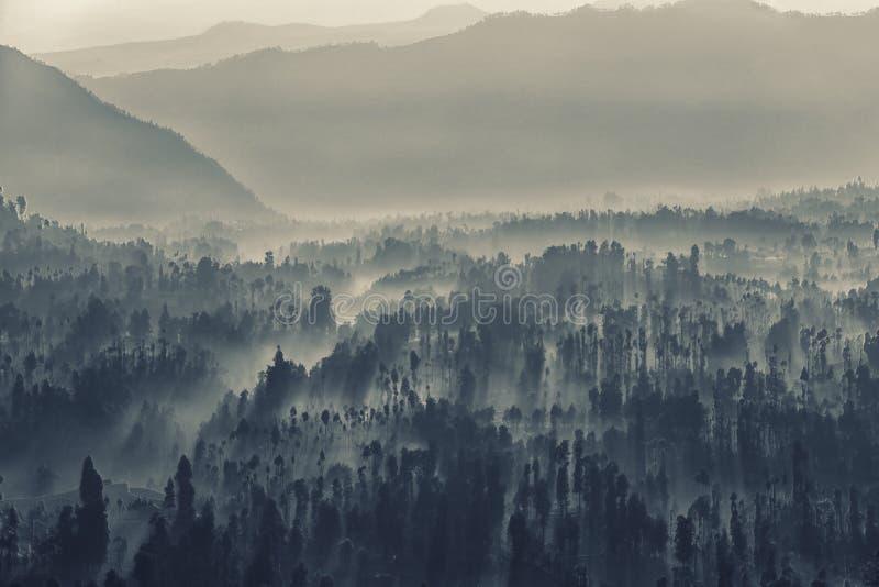 Bromo破火山口到雾里 免版税库存照片