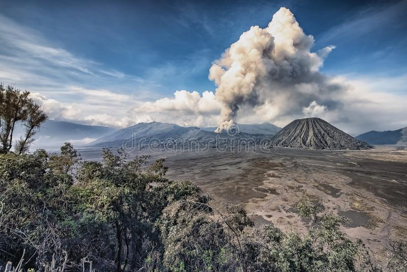 Bromo nationalpark royaltyfri foto