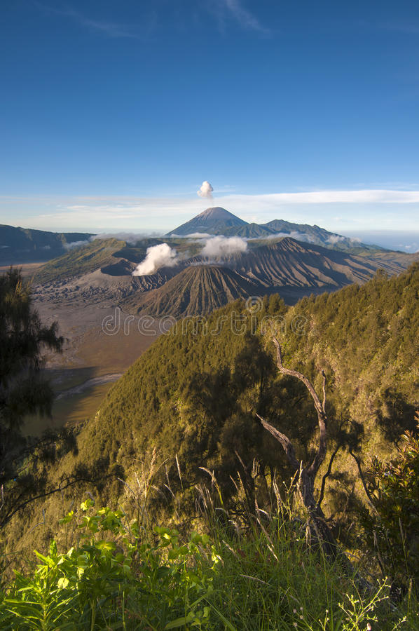 Bromo Tengger Semeru National Park in East Java, Indonesi. A - There are five volcanoes inside the Tengger Caldera : Mount Bromo, Mount Batok, Mount Kursi, Mount royalty free stock images
