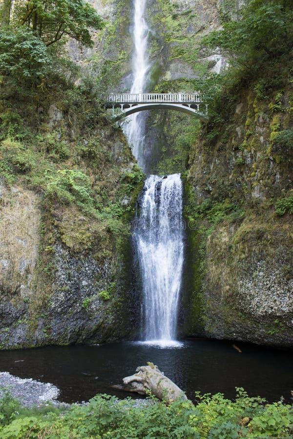 bron faller multnomah arkivfoto
