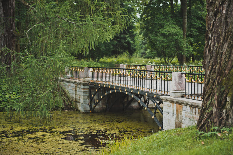 Bron i Catherine Park 1069 royaltyfri foto