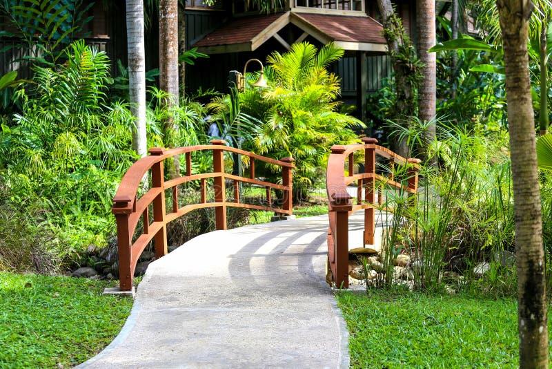 Bron i en natur parkerar med grön bakgrund arkivbilder