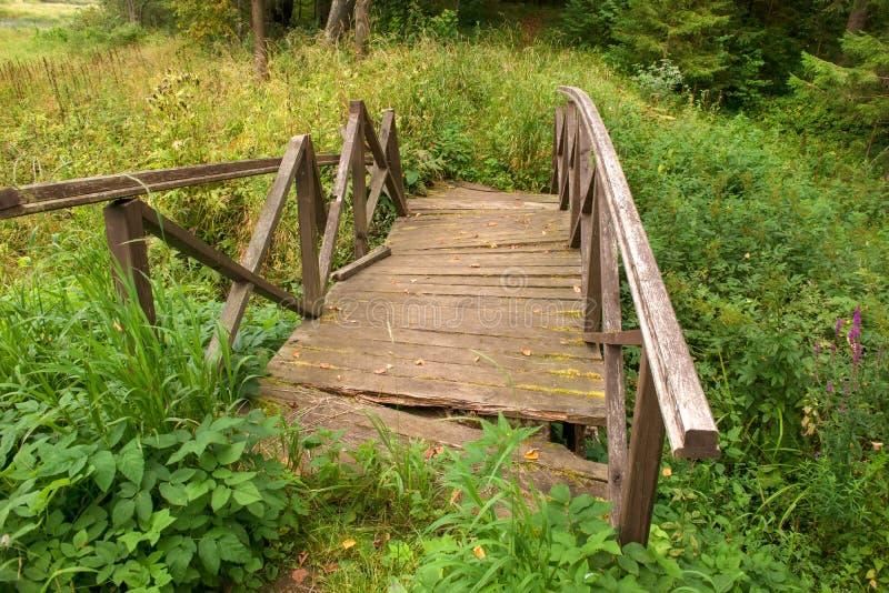 Bron i skogen kollapsade royaltyfria foton