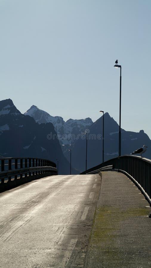 bron lofoten fotografering för bildbyråer