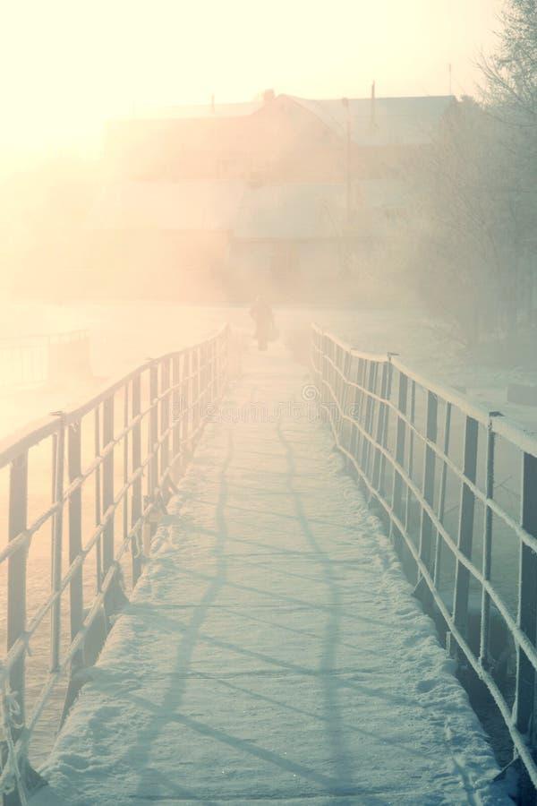 Bron med järnräcke övervintrar kondensation under frost royaltyfri foto