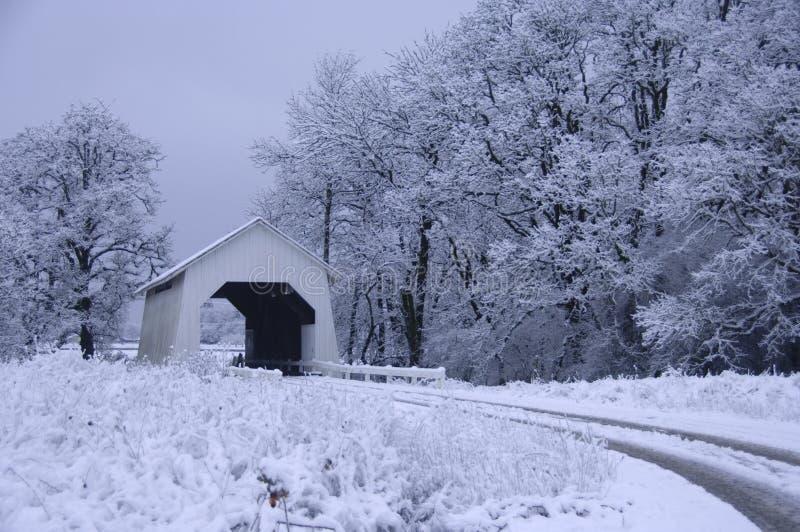 bron räknade snow fotografering för bildbyråer