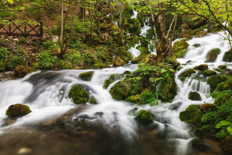 Bron van de rivier Grza, Servië stock afbeelding