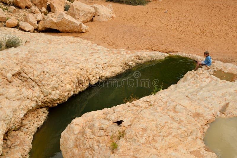 Bron van water in de woestijn royalty-vrije stock foto's