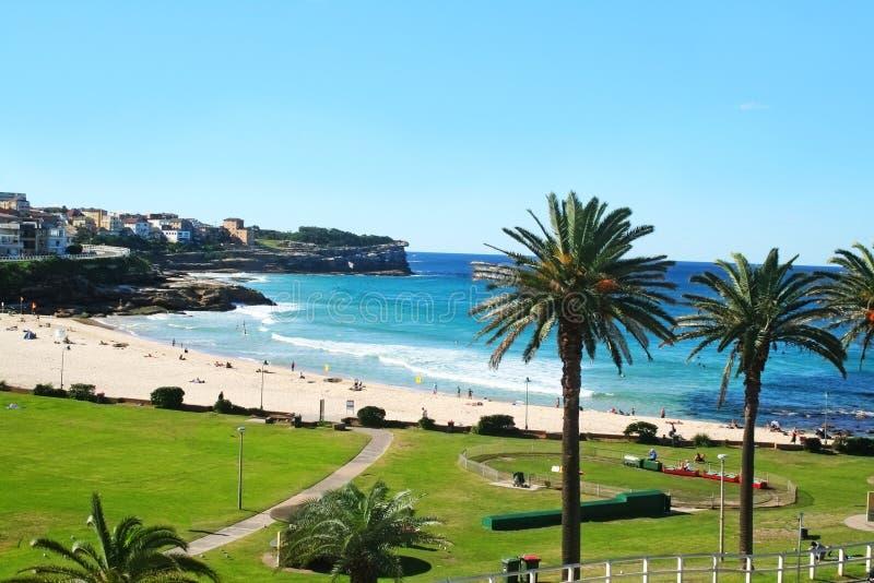Bronte strand Sydney royaltyfri fotografi