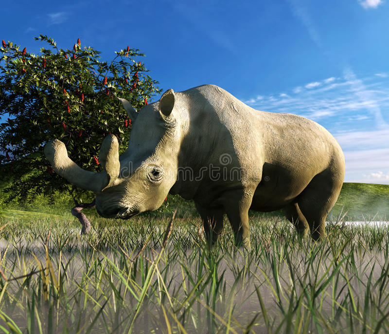 Brontotherium In Grassland. An illustration depicting Brontotherium in a grassland. Brontotherium are an extinct group of rhinoceros-like browsers related to royalty free illustration