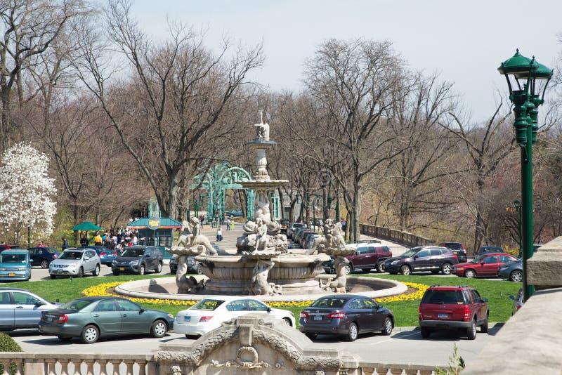 Bronx Zoo royalty free stock photography