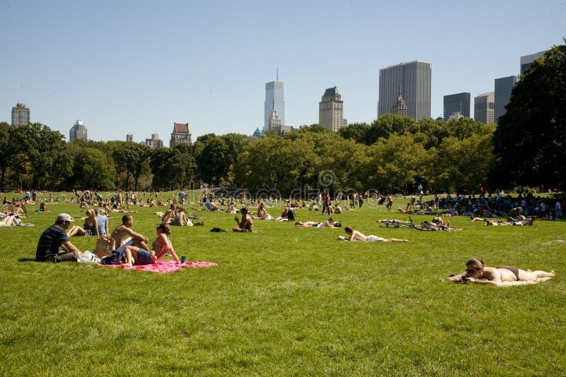 Bronzage dans Central Park image stock