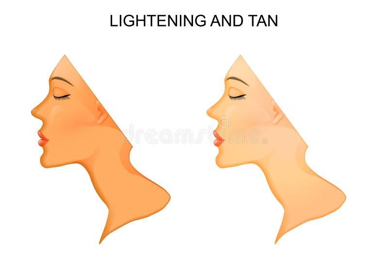 Bronzage et allégement de peau illustration stock