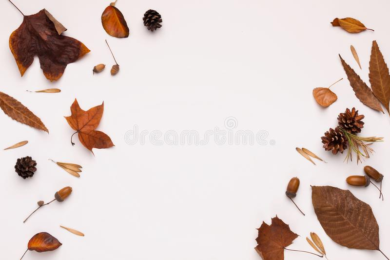 Bronze and brown leaves creating frame for text on white royalty free stock image