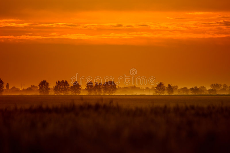 Bronze colour dawn. A beautiful foggy autumn sunrise royalty free stock photography
