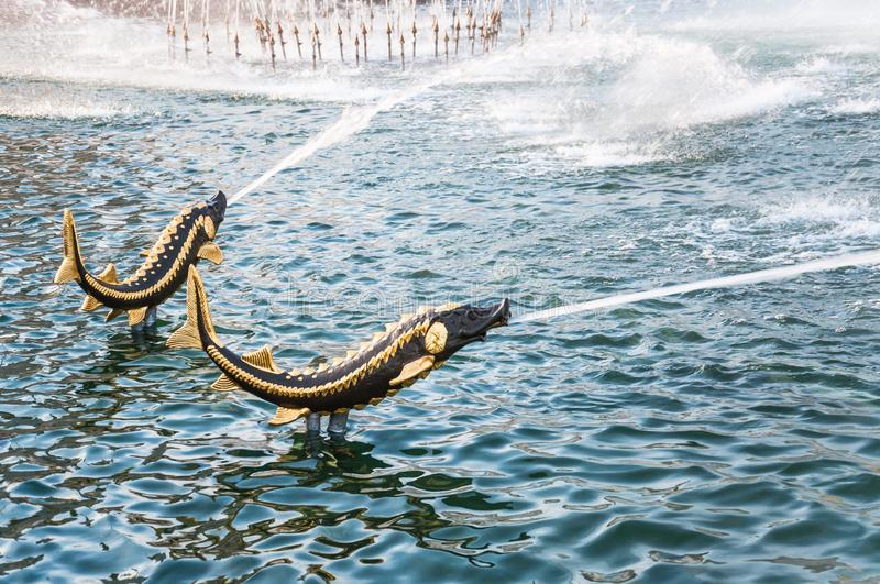 Bronze figures-fountains of sturgeon fish  in the pool of the Stone Flower Fountain at VDNH. MOSCOW, RUSSIA - May 1, 2019: Bronze figures-fountains of sturgeon stock photo