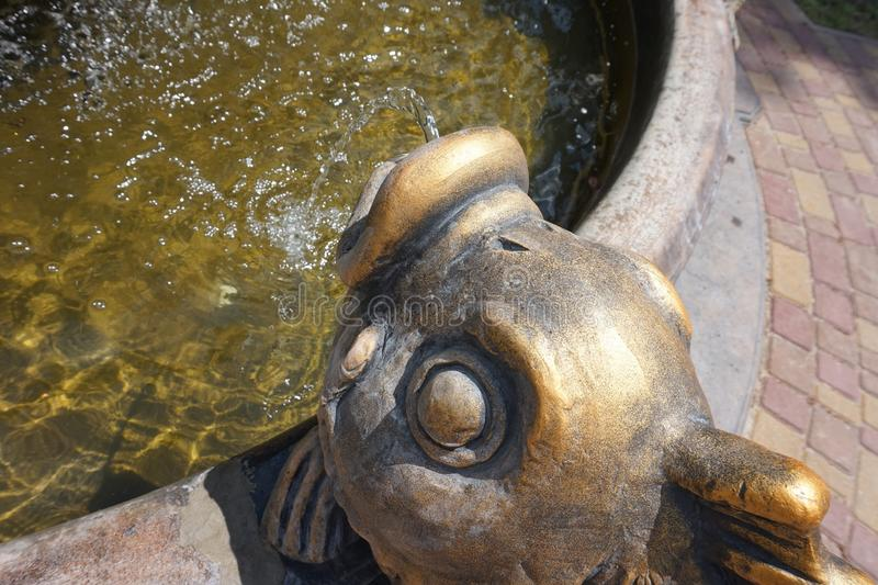 Bronze fish head, from which water flows. Part of the fountain. Bronze fish head, from which water flows. Part of the fountain royalty free stock photos
