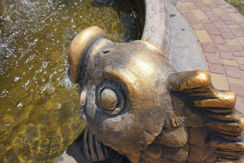Bronze fish head, from which water flows. Part of the fountain. Bronze fish head, from which water flows. Part of the fountain royalty free stock photography