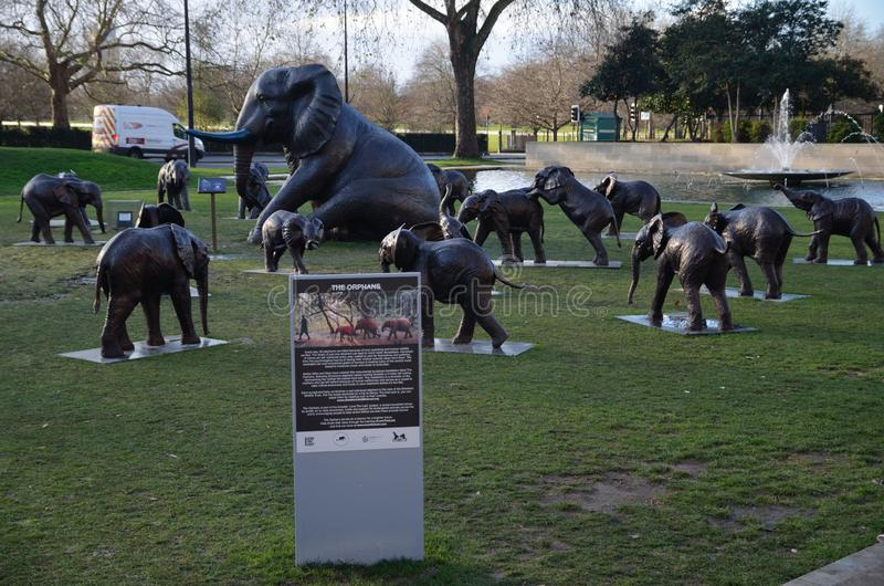 The bronze pachyderms are in place to support the Sheldrick Wildlife Trust, who help to rescue elephants. Created by artist-activists  and marc, the bronze stock images