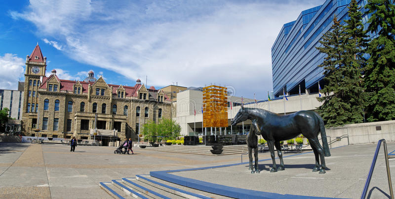 Bronze statue called Family of Horses in Calgary royalty free stock image