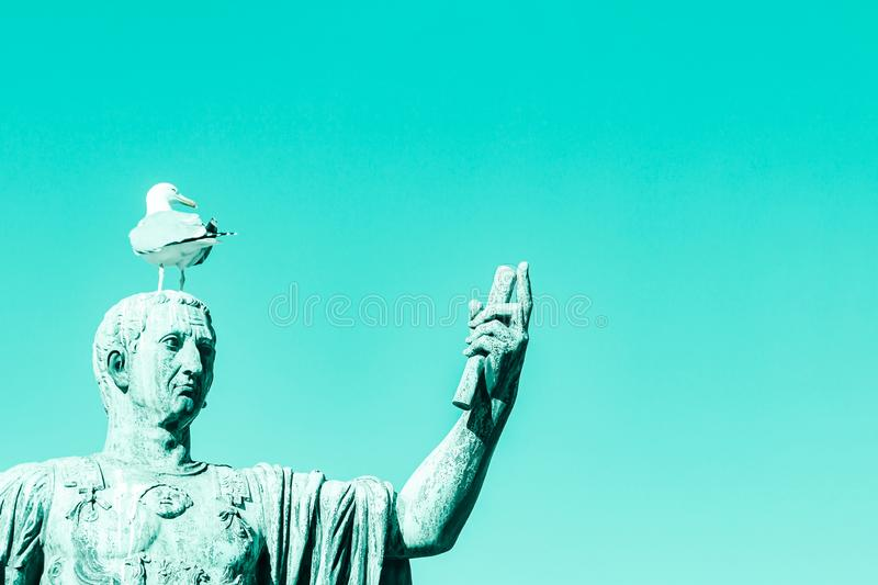 Statue of emperor Caesar Nervae August with gull on the head. Man taking selfie. Humor concept. Cyan color background royalty free stock photography