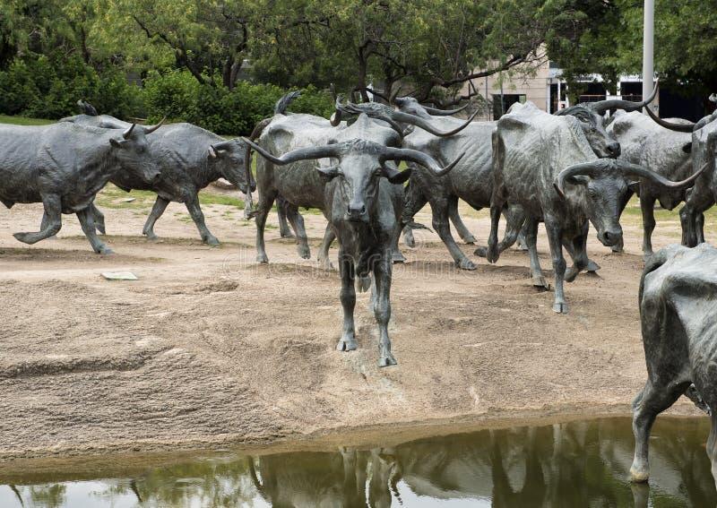 Download Bronze Steer Sculpture Pioneer Plaza, Dallas Stock Photo - Image of drive, bronze: 94774740