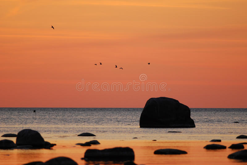 Bronze sunset. Over the Bay of Tallinn royalty free stock image