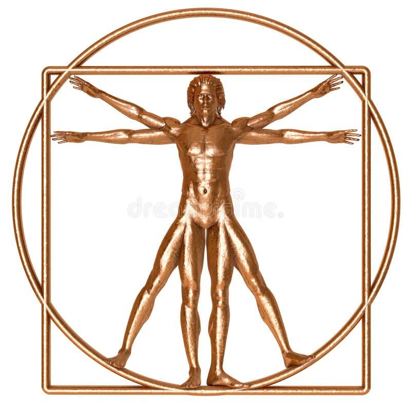 Bronze Vitruvian Man. An antique bronze Vitruvian man isolated on white royalty free stock photos