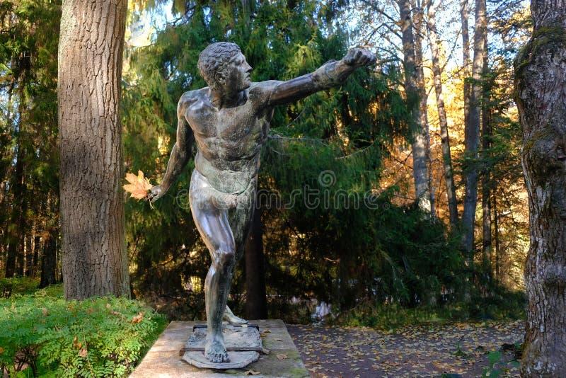 Bronzestatue Kriegers-Kämpfer oder Borghese-Gladiator mit Blumenstrauß des Herbstlaubs in der Hand, in Pavlovsk-Park, Heiliges Pe stockfotografie
