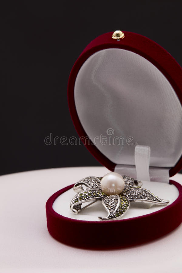 Free Brooch Royalty Free Stock Photography - 40011427