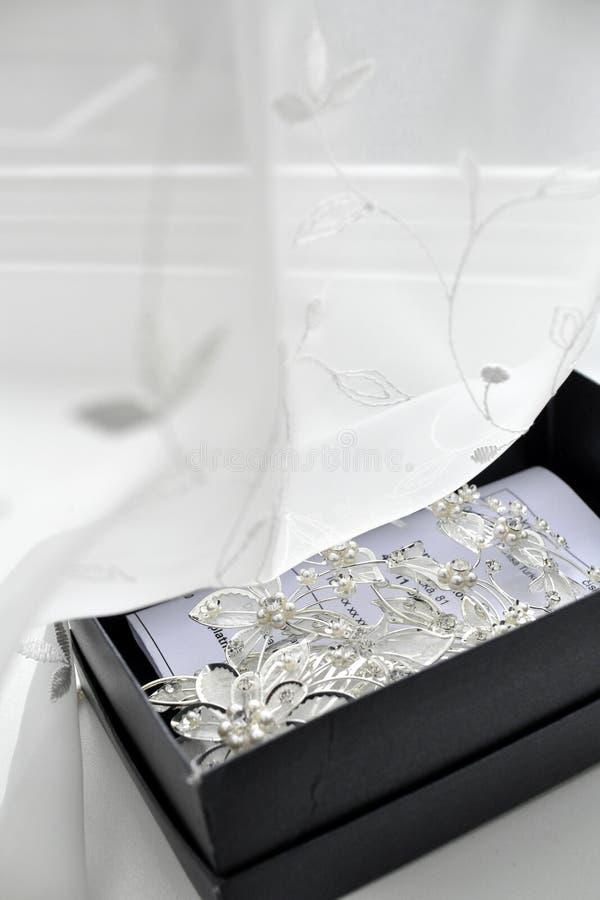 Brooch e pinos de prata imagem de stock royalty free