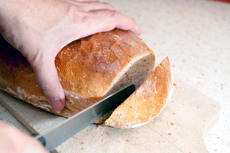 Brood stock afbeeldingen