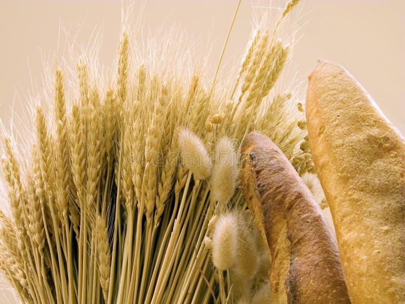 Brood en tarwe royalty-vrije stock fotografie