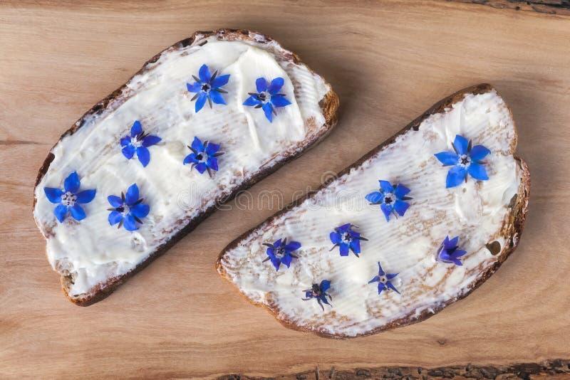 Brood, kaas en boragebloemen royalty-vrije stock foto