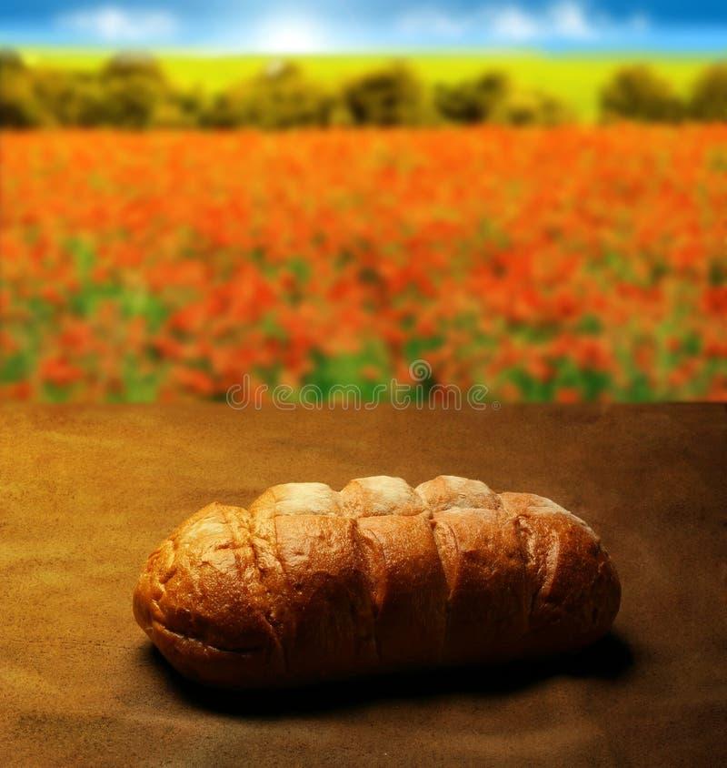 Brood van het Leven stock afbeelding