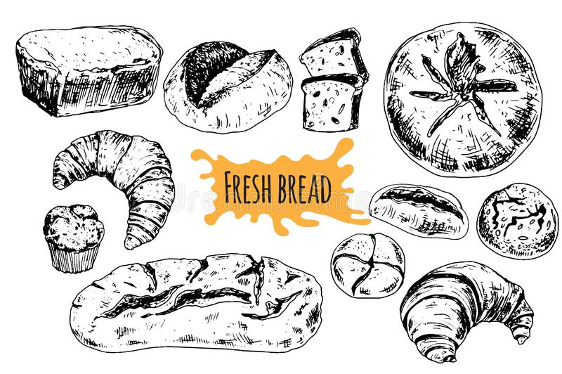 Brood vectorhand getrokken vastgestelde illustratie stock illustratie
