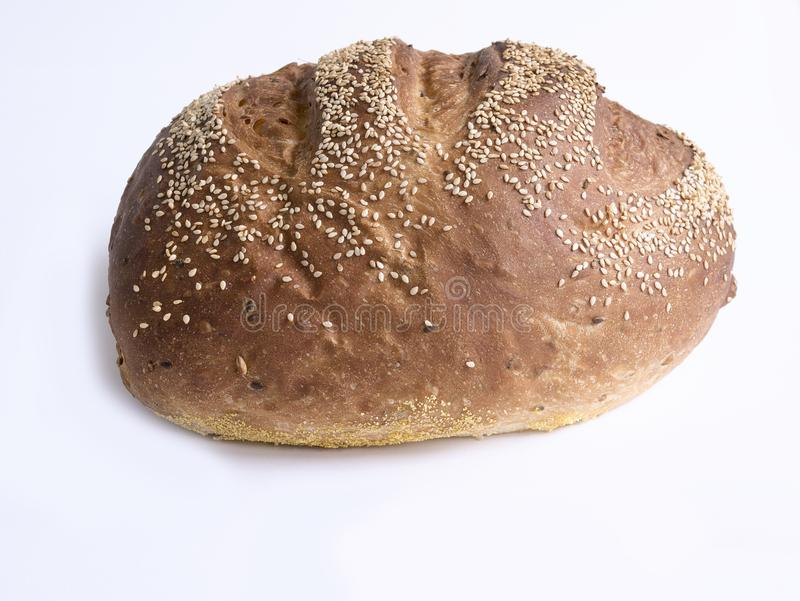 Broodmaïskolf royalty-vrije stock foto
