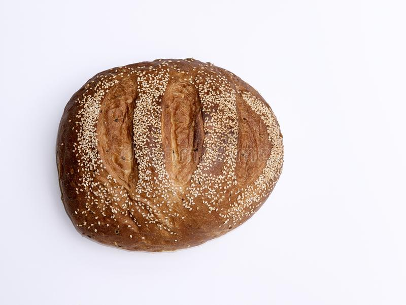 Broodmaïskolf stock fotografie