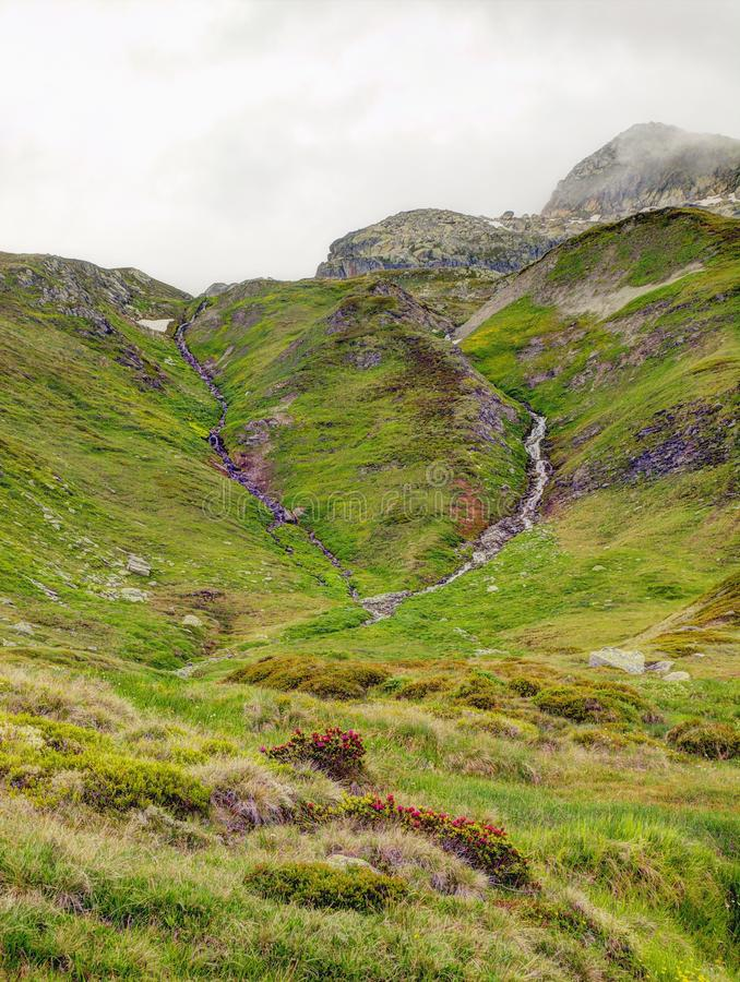 Brook in fresh Alps meadow, snowy peaks of Alps in background. Cold misty and rainy weather in mountains at the end of fall. royalty free stock images