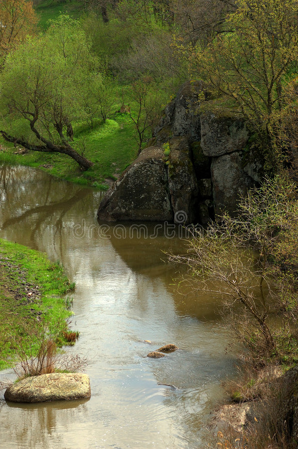 Free Brook In Forest Royalty Free Stock Photos - 4935098