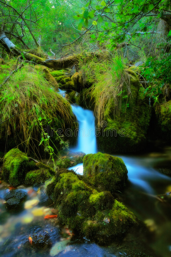 Brook in the village of Vevcani royalty free stock photos