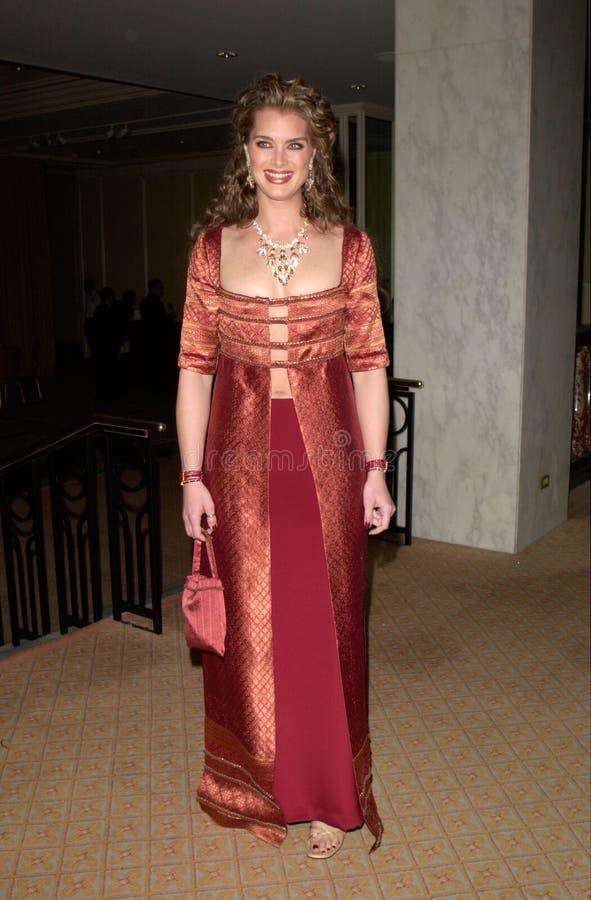 Brooke Shields image stock