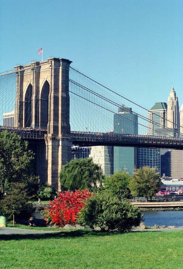 Brooklyn-Brückeen-Park stockfotografie