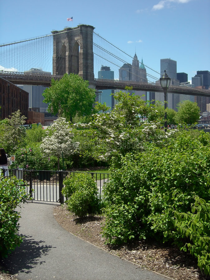 Brooklyn Bridge Park New York USA. Brooklyn Bridge Park view of Manhattan skyline royalty free stock image