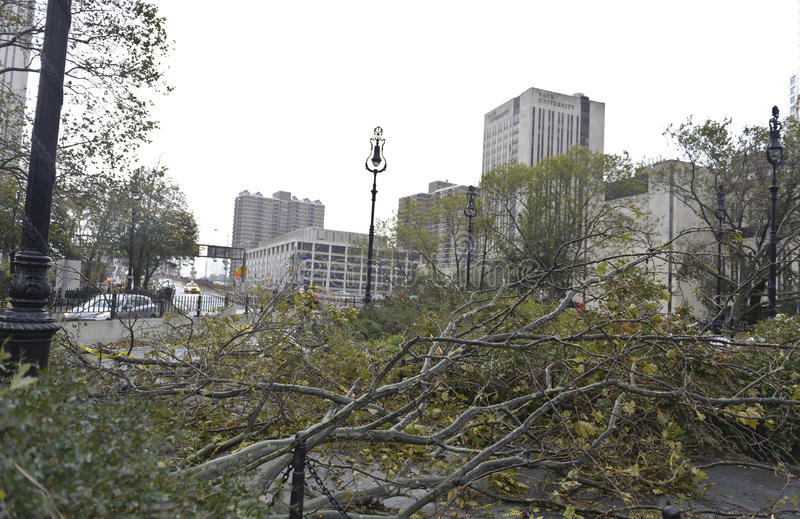 Download Brooklyn Bridge After Super Storm Sandy Editorial Photography - Image: 27581277
