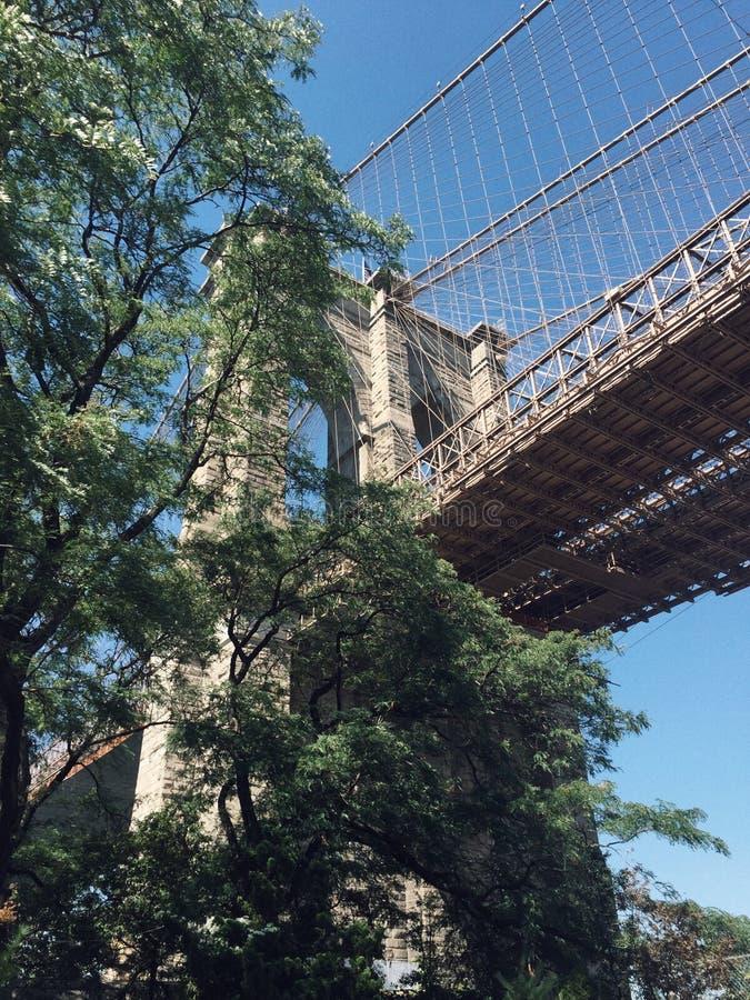 Brooklyn bro och sikten av Manhattan royaltyfri bild