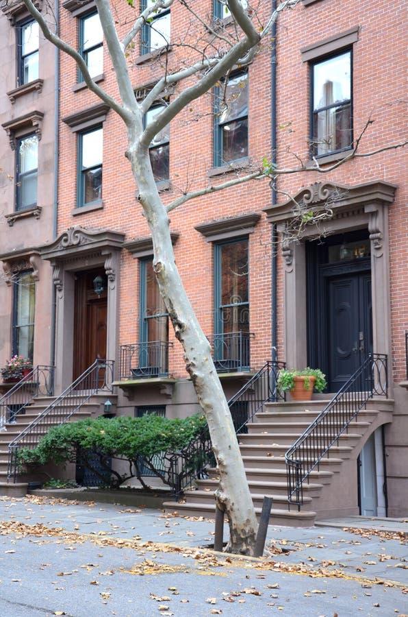 Brooklyn-Brownstones stockfoto