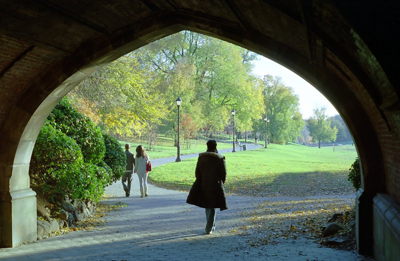 brooklyn ny park perspektywy obraz royalty free